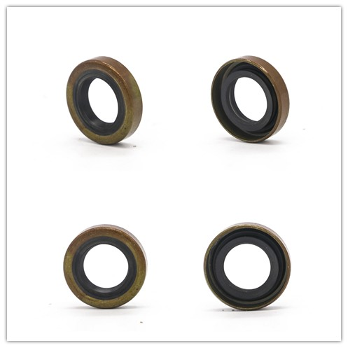 Auto spare parts of oil seal